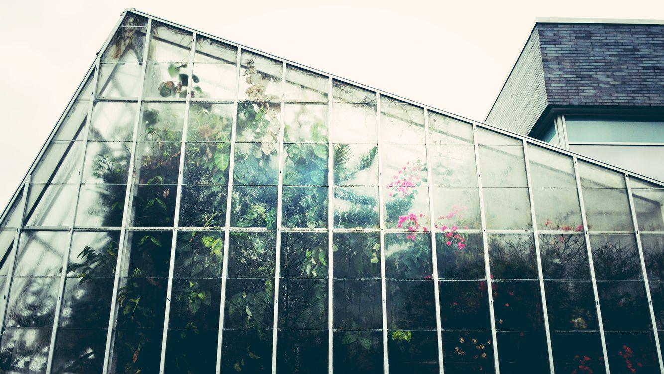 Фото архитектура растение цветок - бесплатные картинки на Fonwall