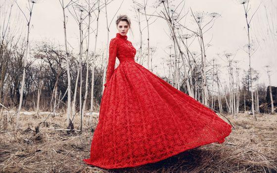 Photo free wedding dress, textile, women outdoors