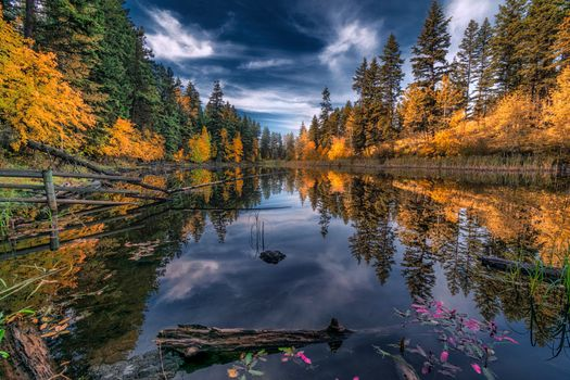 Photo free reflection, forest, autumn colors