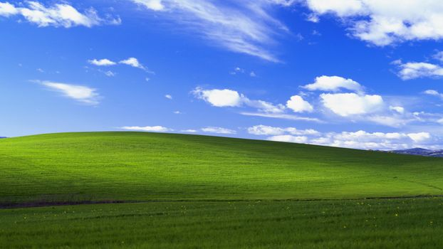 Photo free Windows, computer, simple background