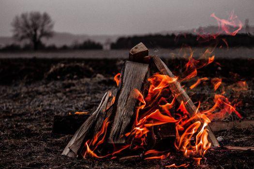 Photo free fire, soil, campfire