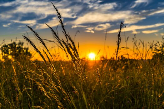 Photo free morning, agriculture, prairie