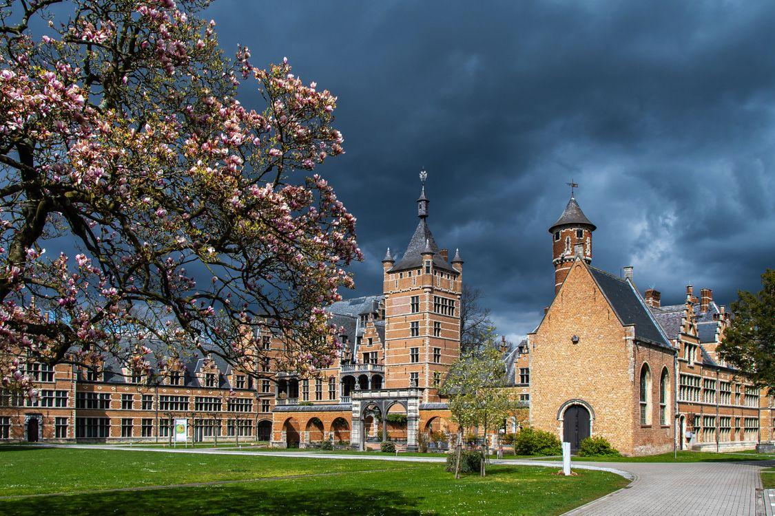 Фото города бельгия весна - бесплатные картинки на Fonwall