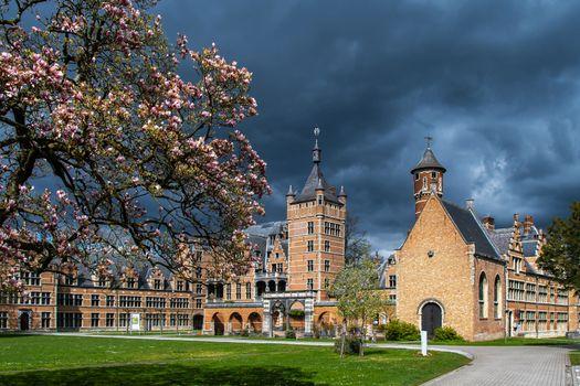 Фото бесплатно города, Бельгия, весна