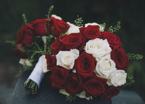 Photo free red, white, roses