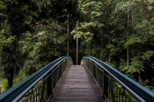 Photo free forest, outdoor, architecture