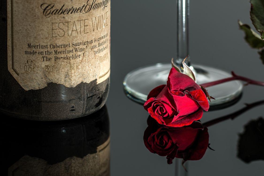 роза на столе · бесплатное фото