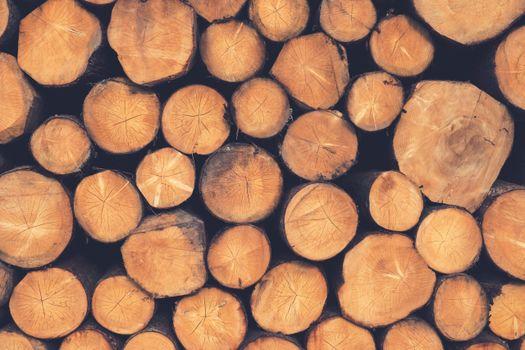 Photo free wood, pile, wood pile