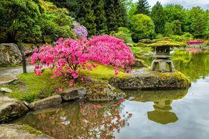 Photo free park, stones, trees
