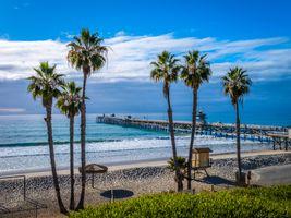 Photo free usa palms, USA, ocean