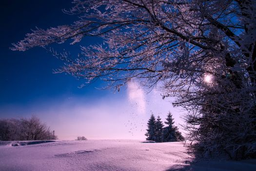Photo free sky, blue snow, beautiful