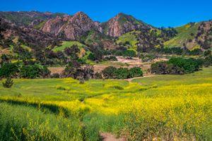 Фото бесплатно Калифорния, парки, горы сша