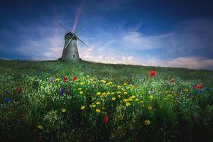 Бесплатные фото поле,мельница,цветы,пейзаж