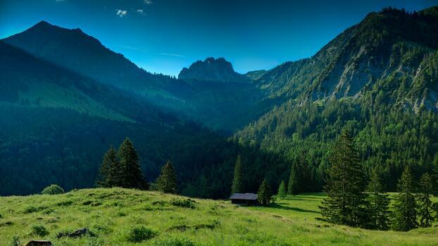 Photo free hill, ridge, tree