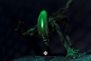 Чужой в зеленом цвете