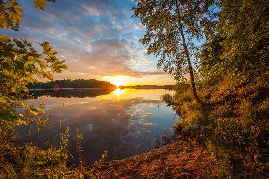 Фото бесплатно деревья, рыбалка, пейзаж