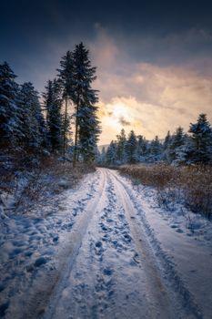 Заставки зима, следы, закат