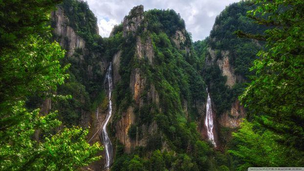 Photo free terrain, jungle, tropical forest