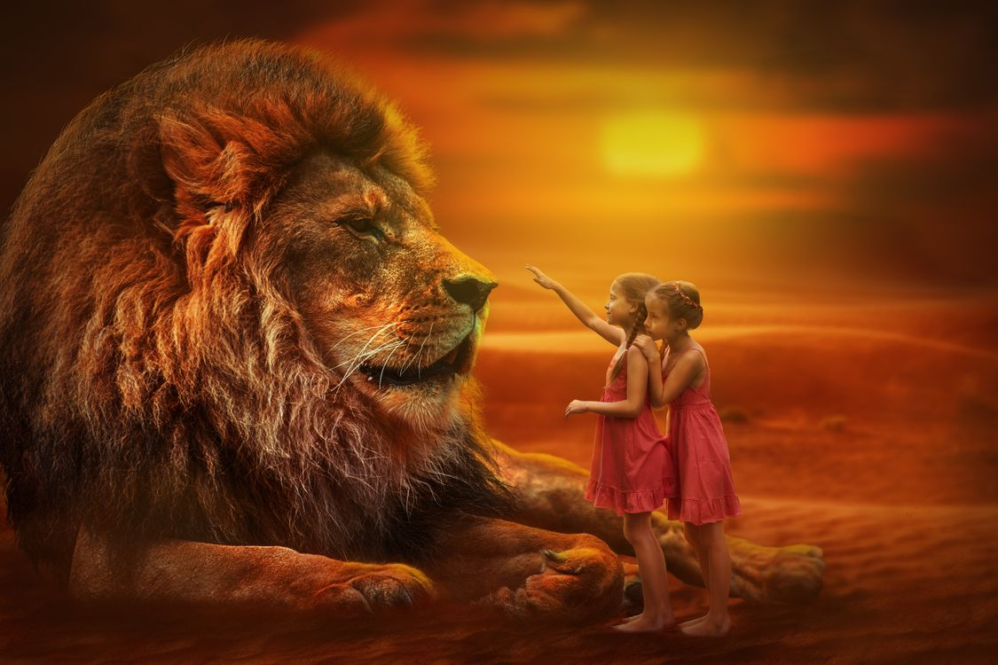 Фото бесплатно лев, хищник, животное, дети, девочки, взгляд, взаимопонимание, отношение, характер, фотошоп, рендеринг