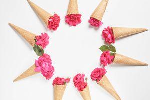 Фото бесплатно цветок, розы, розовый цвет