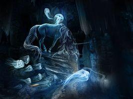 Бесплатные фото лошадь, медузы, art