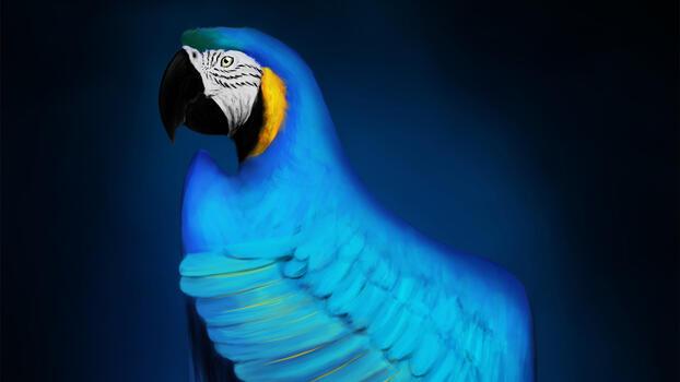 Фото бесплатно попугай, художник, Ара