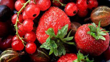 Бесплатные фото клубника,смородина,крыжовник,ягоды,десерт,еда
