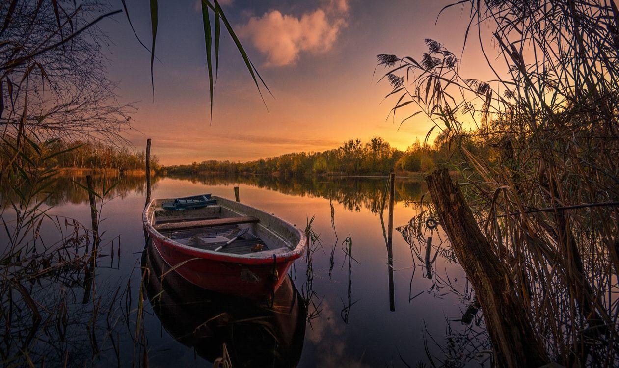Обои Йоркшир, Канада, закат, озеро, лодка, деревья, пейзаж на телефон | картинки пейзажи