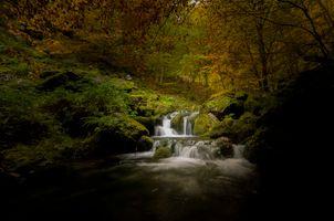 Заставки мох, осень, водопад