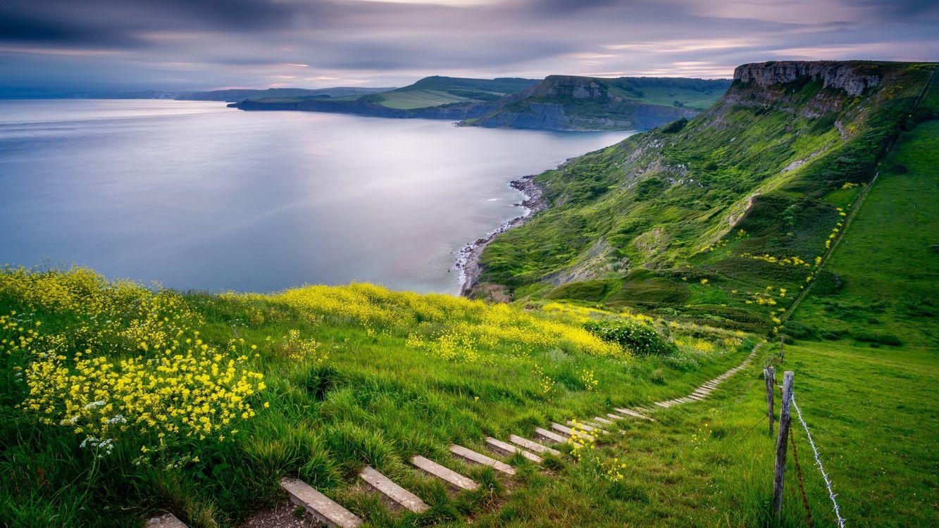 Фото бесплатно холм, цветы, ступеньки - на рабочий стол