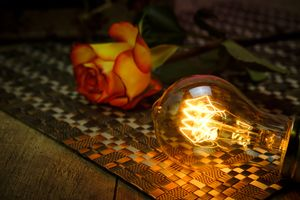 Бесплатные фото стол,роза,цветок,лампочка,свет