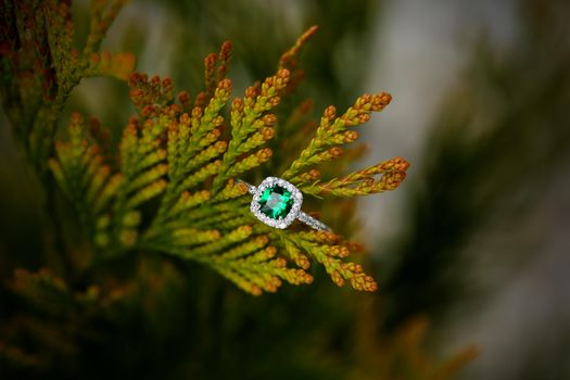 Photo free ring, decoration, emerald