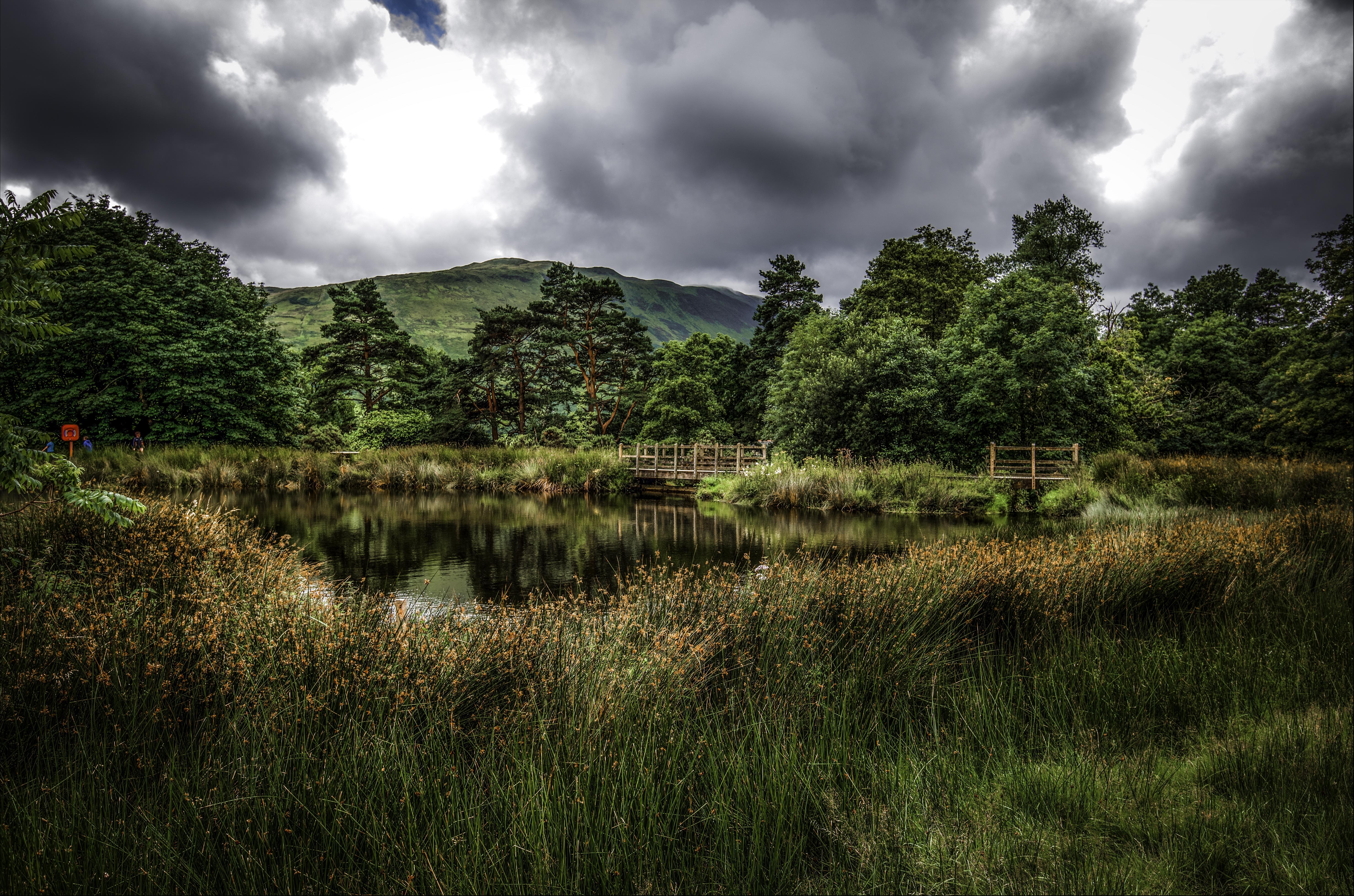 обои озеро, тучи, мост, деревья картинки фото