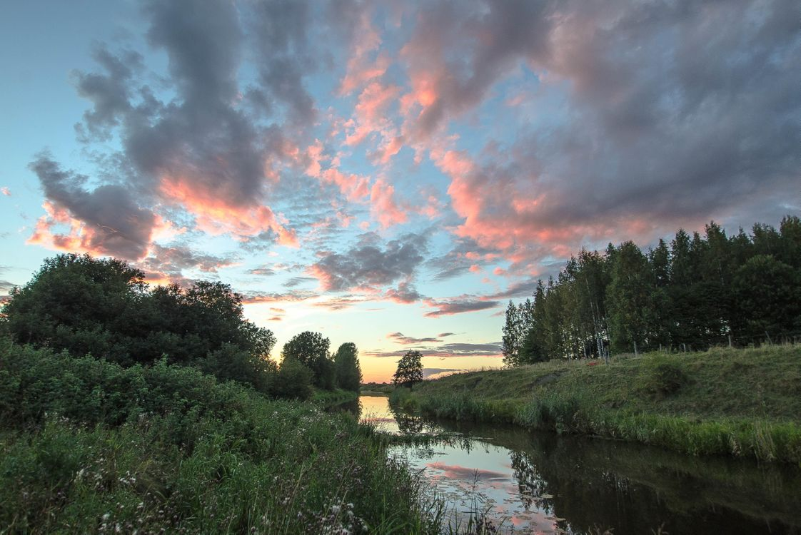 Фото бесплатно закат, река, лес, деревья, пейзаж, пейзажи