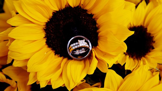 The sunflower engagement ring