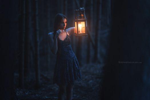 Бесплатные фото женщины,брюнетка,женщины на открытом воздухе,лес,лампа,платье,ночь,деревья,stefan h usler