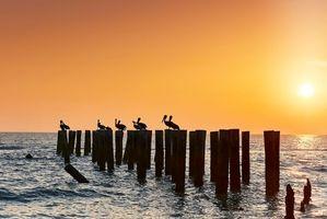 Фото бесплатно Флорида, море, пейзаж