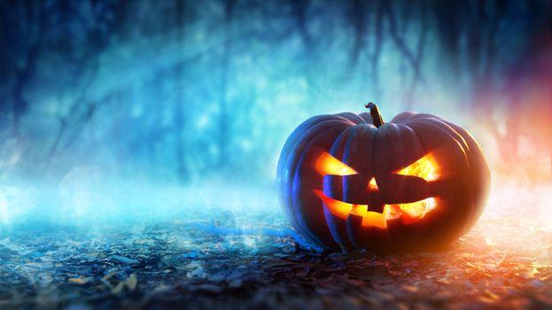 Фото бесплатно тыквы, Хэллоуин, праздники