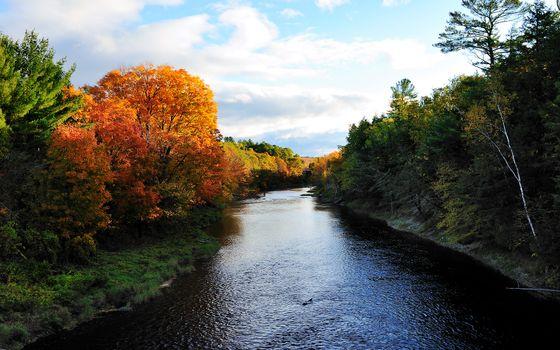 Photo free autumn, river, sunny day