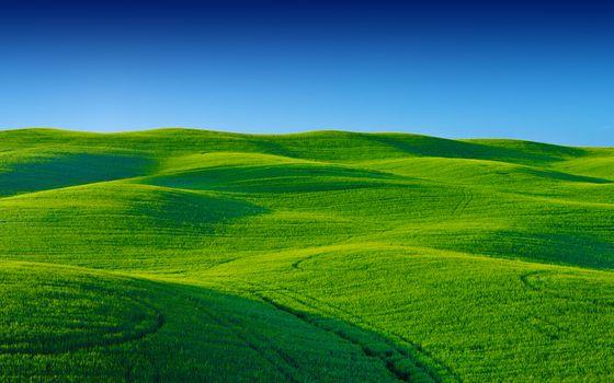 Фото бесплатно зелёная местность, поле, небо