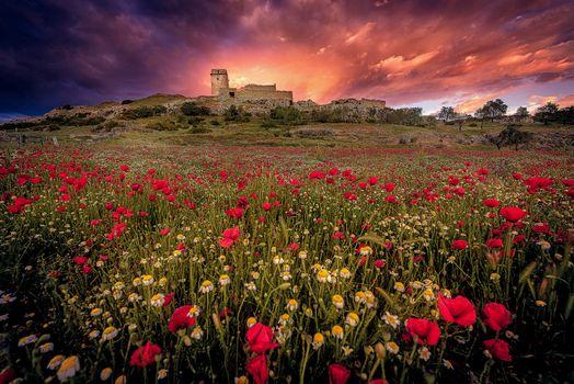 Фото бесплатно Замок Castillo de Taybona, Испания, поле