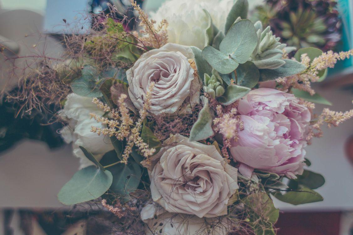 Фото бесплатно букет, розы, цветы