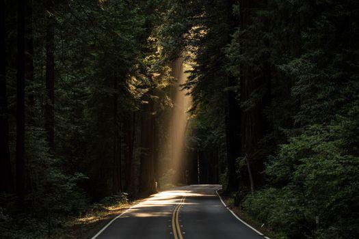 Фото бесплатно легкий, дорога, шоссе