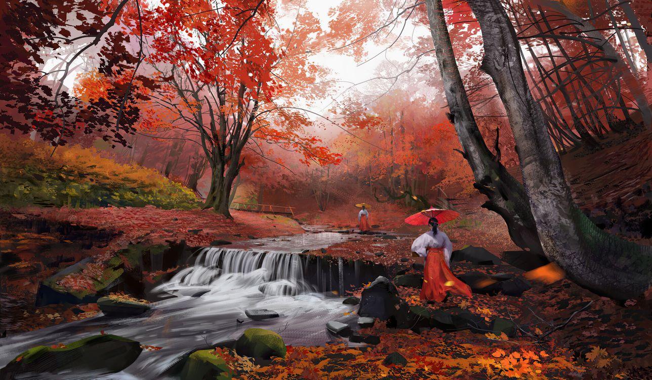 Фото художник осень лес - бесплатные картинки на Fonwall