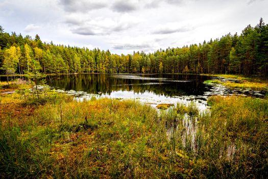 Photo free nature, Helsinki, Finland