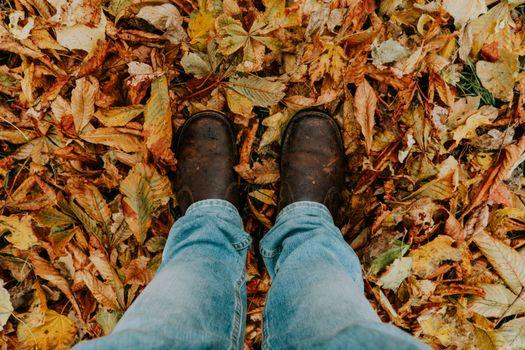 Фото бесплатно foliage, feet, autumn