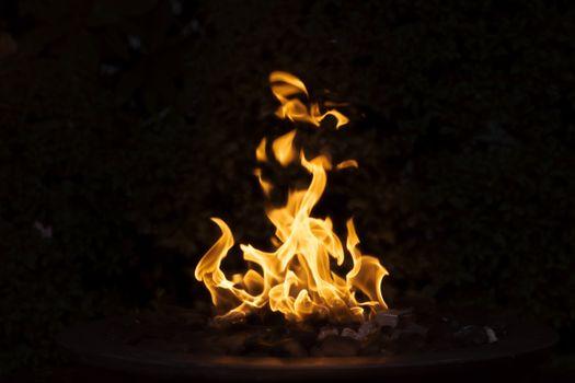 Фото бесплатно костер, пламя, близко