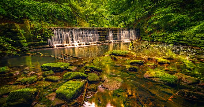 Фото про лес, водопад