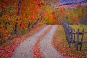 Фото бесплатно деревья, пейзаж, забор