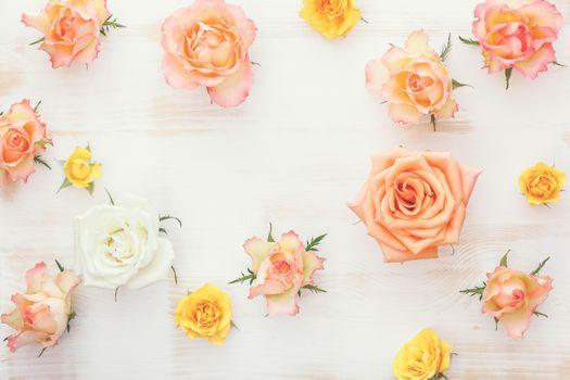 Обои розы, цветы на рабочий стол высокого качества